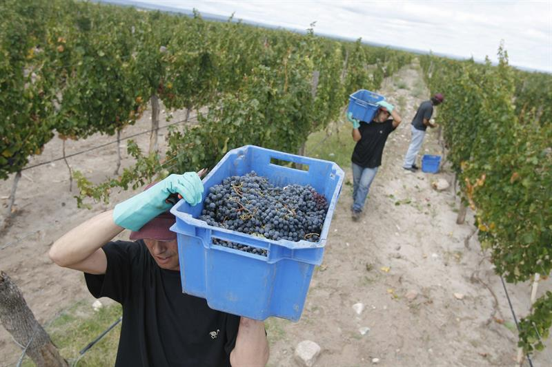 The Argentine Government desists from increasing the tax on wines and sparkling wines
